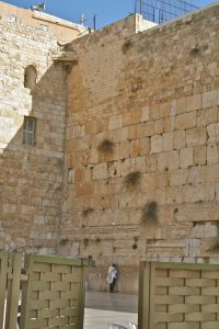 Wailing Wall man